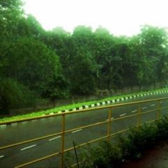Jalan depan pabrik yang terguyur hujan